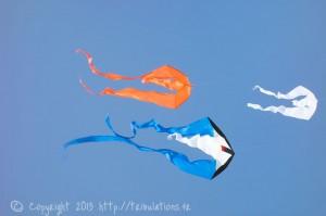3 cerfs-volants