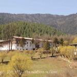 Monastère de Lame Gompa