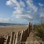 Dune : une première protection de piquets de bois