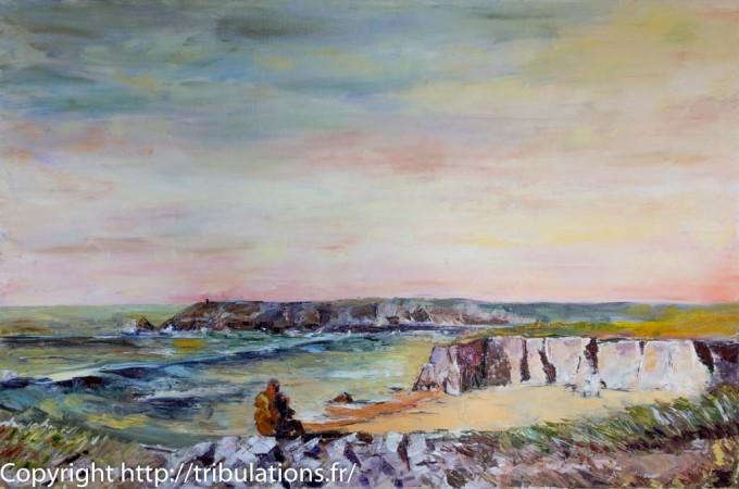 Spectacle d'amphithéâtre de la côte Sauvage à Quiberon