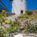 Moulin au sommet de l'île, Astypalea