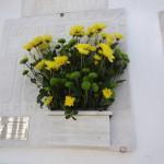 La tombe fleurie de Tchélo