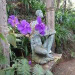 le jardin tropical 1