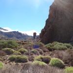 Ténériffe : alentours du Teide