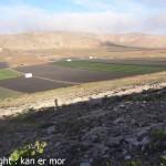 Les champs de Los Valles