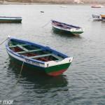 Barques de pêche à Palmeira