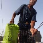 Le pêcheur de langoustes