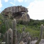 Dans le parc de Pedra da Boca