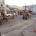 Mélange de transports dans la rue