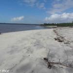 Plage de l'île Restinga