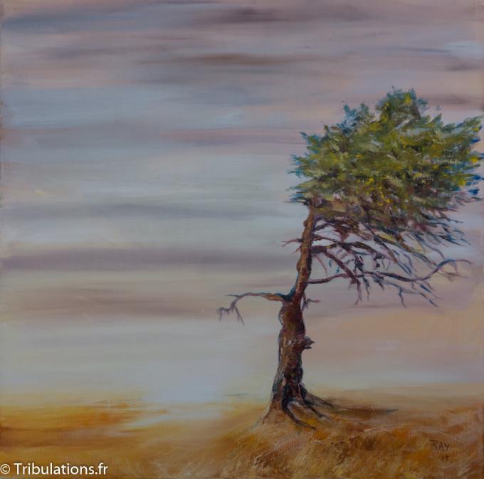 """Tableau : """"Façonné par le vent"""", peinture mixte sur toile, 60x60 cm"""