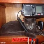 Torpen sous la VHF pendant la traversée
