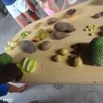 Fruits et légumes de Grenade