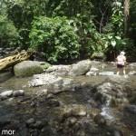 Une-des-traversées-de-la-rivière-Moreau