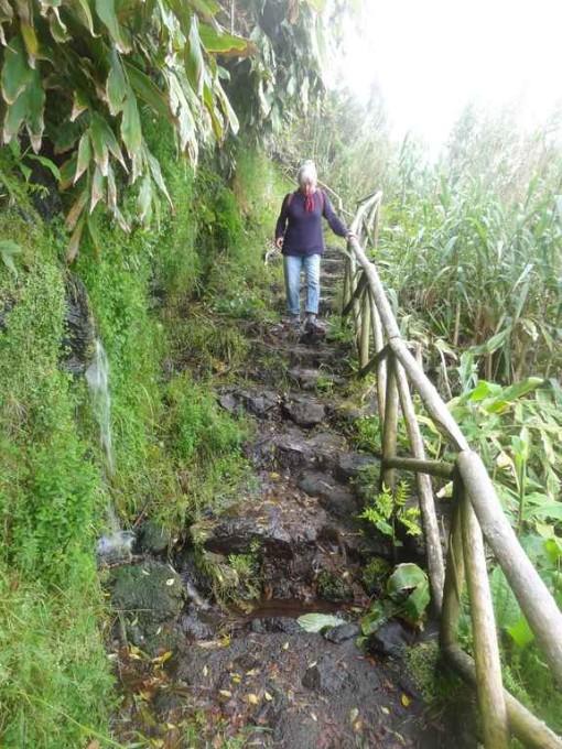 Le sentier de Faja lopo vaz